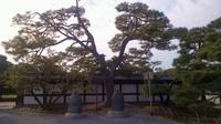 20111029_Kyoto_Sansaku_05.jpg
