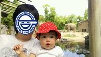 20130518_tennouji_zoo.jpg